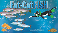 Fat-CatFish logo