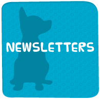 Newsletter PDFs