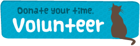 Volunteer with WeSNiP